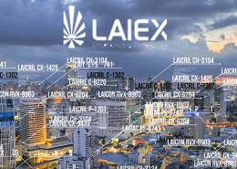 video-marketing-laiex-empresa