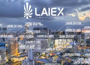 video-marketing-laiex-empresa